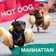 Hot Dog Manhattan Porto Vecchio